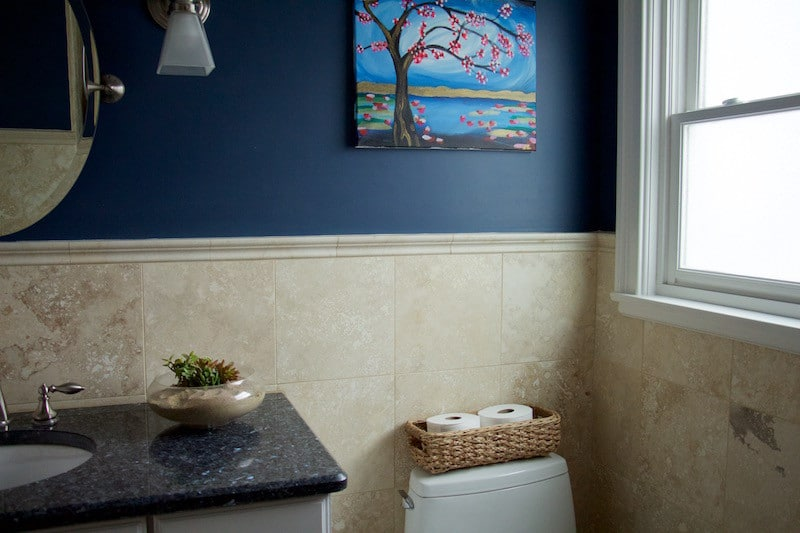 Kids' bathroom with navy wall and succulent. #bathroomdecor